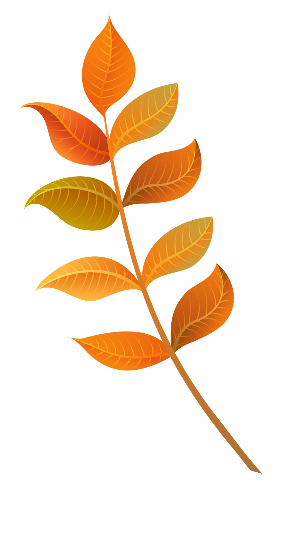 Fall Leaves Png Image.