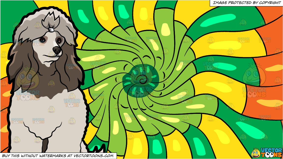 A Beautiful Miniature Poodle and A Psychedelic Warm Swirls Background.