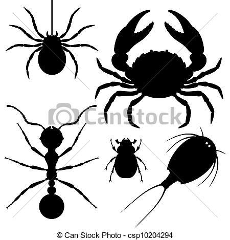 Arthropods Clipart.