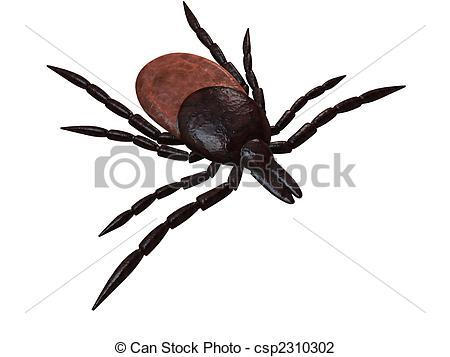 Arthropoda Illustrations and Clip Art. 341 Arthropoda royalty free.