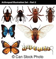 Arthropods Illustrations and Clip Art. 1,735 Arthropods royalty.