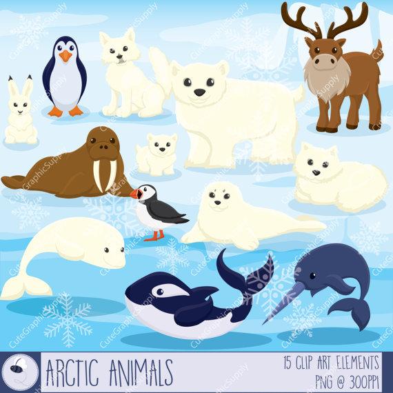 Arctic animals clipart winter clipart animal clipart arctic.