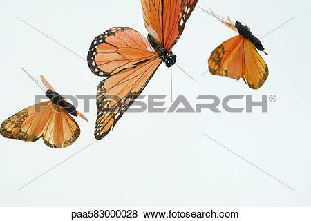 Pictures of Artificial butterflies paa583000028.