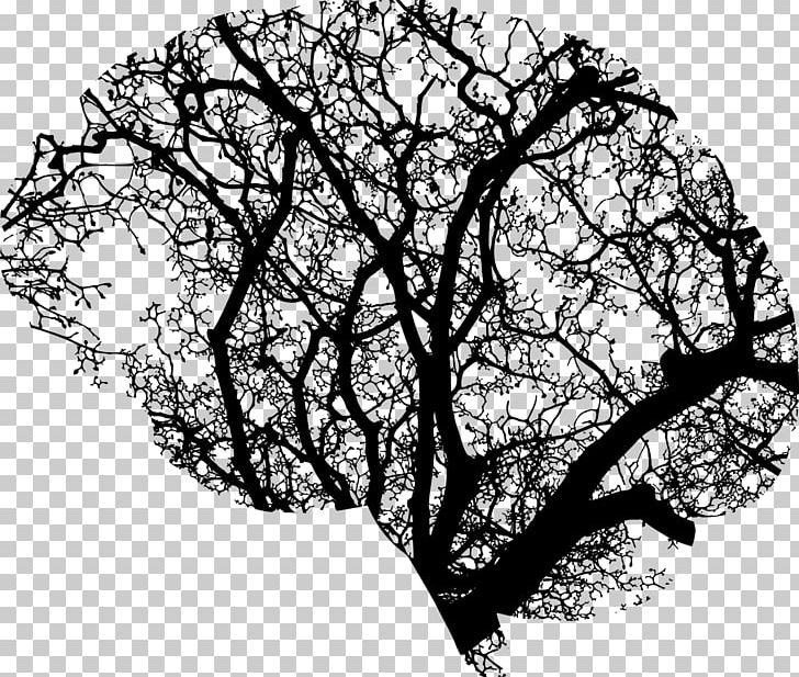 Brain Tree Human Head PNG, Clipart, Anatomy, Artificial.
