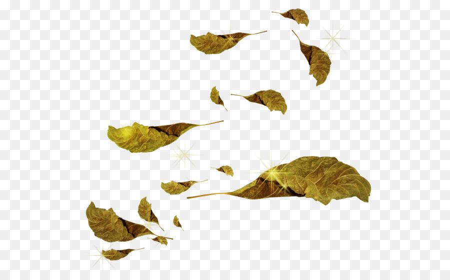 Leaf Autumn Artisans Libres Clip art.