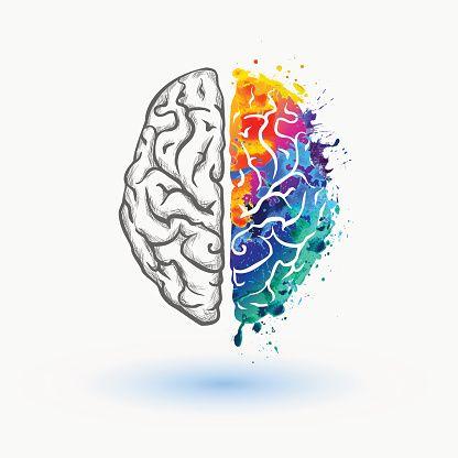 Bright Left and right hemisphere of human brain vector art.