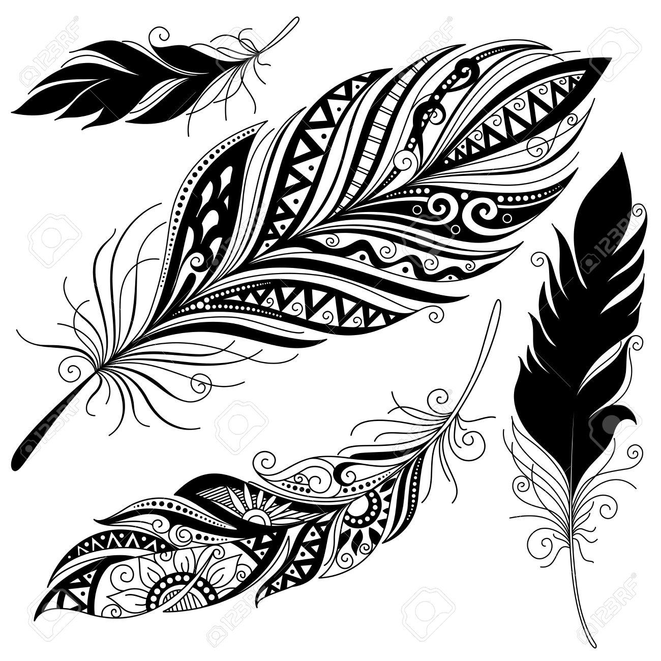 Isolated Set of black ethnic tribal feathers.