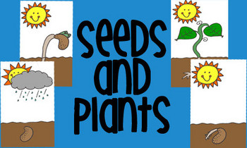 Steps To Planting Seeds Worksheets & Teaching Resources.