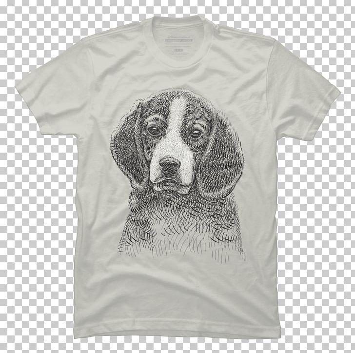 Beagle T.