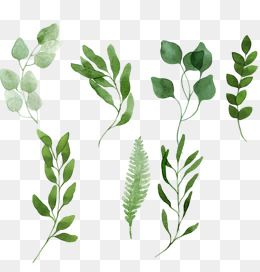 Hand Painted Grass Leaves, Hand Painted Grass, Hand Painted.