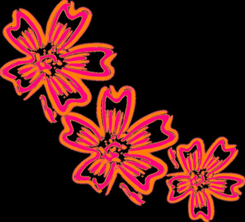 Flowers Orange Pink.