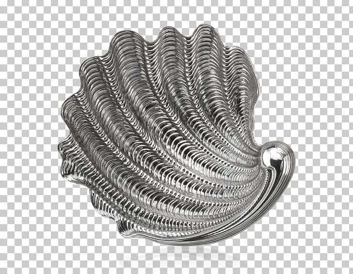 Giant Clam Seashell Household Silver Arval Argenti Valenza.