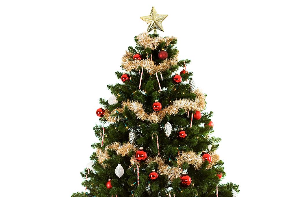 Qual é a origem da árvore de Natal?.