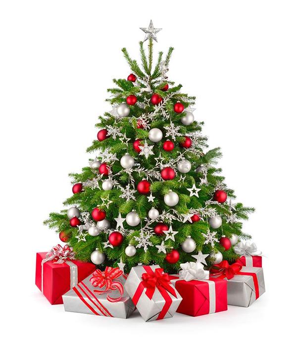 Arvore De Natal Png.