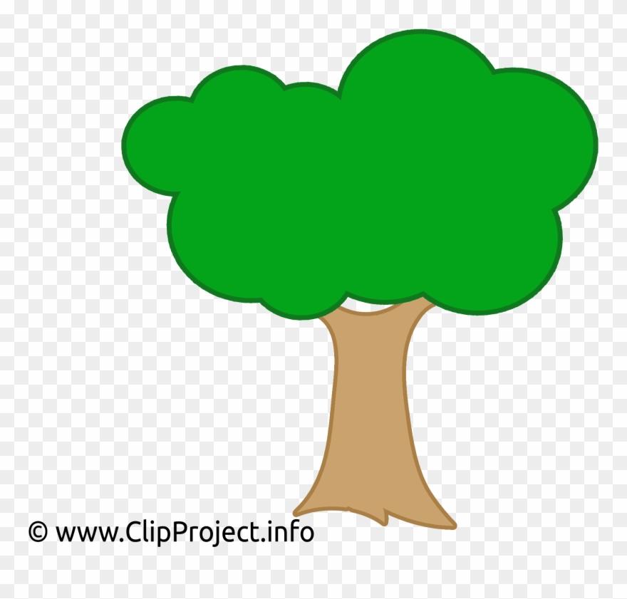 Arvore Vetor Desenho Clipart (#288385).
