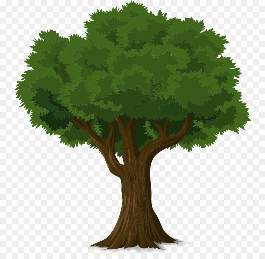 Sombra De árvore PNG Tree Clipart download.
