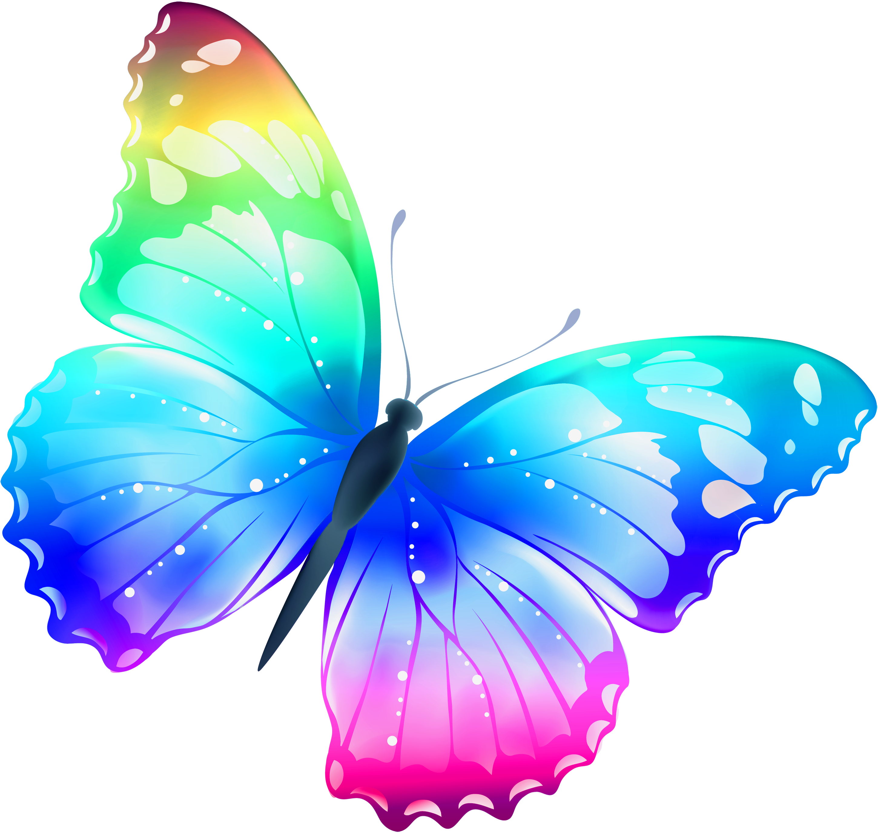 5 clipart colored butterfly Transparent pictures on F.