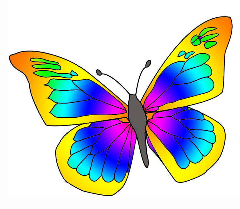 Clipart picture of a butterfly Transparent pictures on F.
