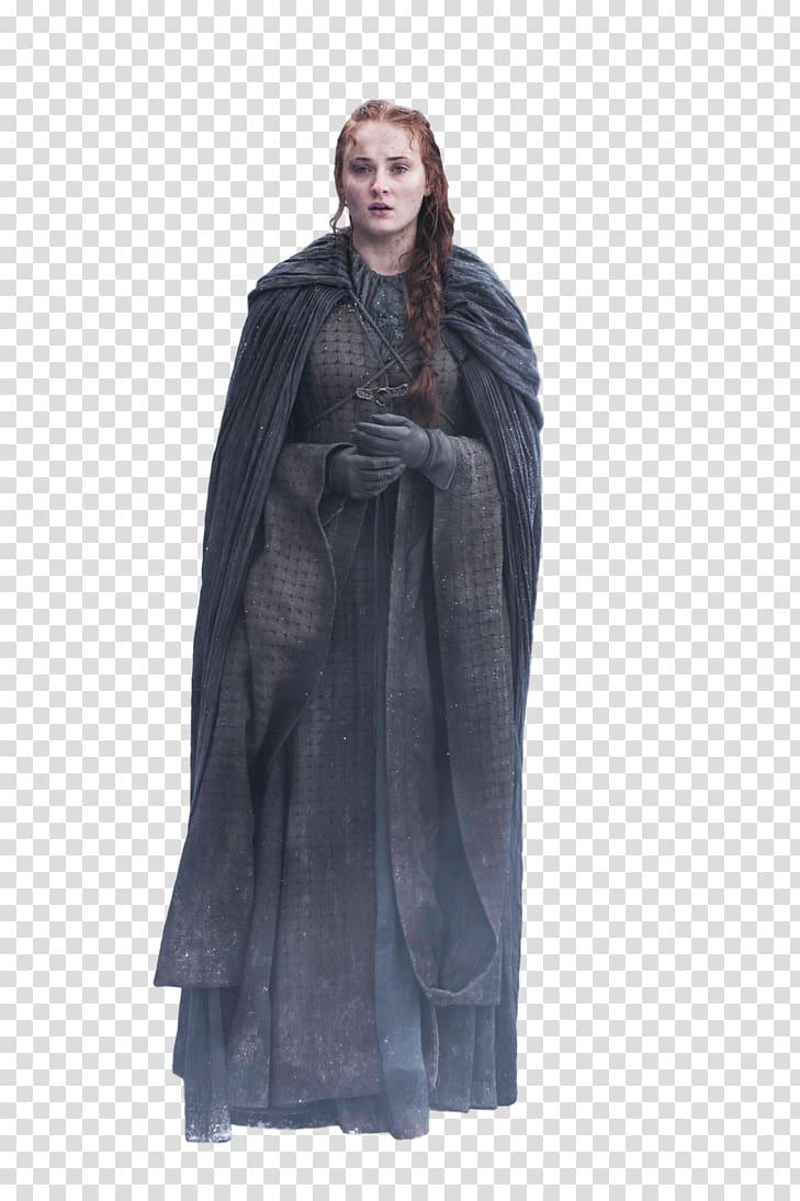 Sansa Stark Arya Stark House Stark The Prince of Winterfell Art.