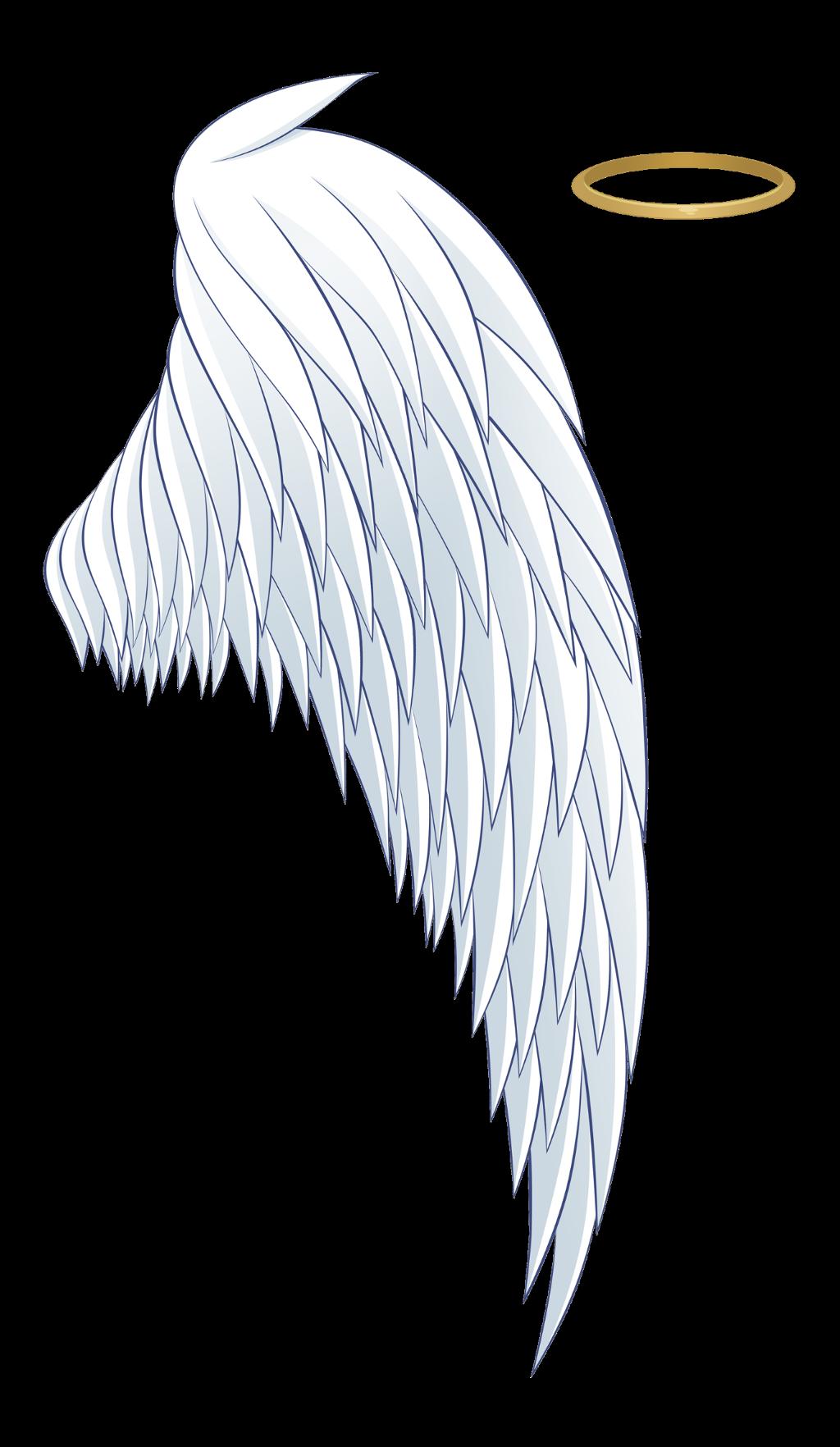 asa png coroa angels.