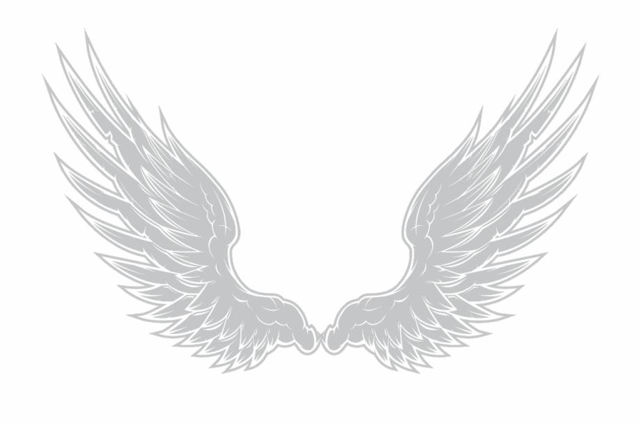 feed #white #asas #borboleta #anjo #asa #remixit #remix.