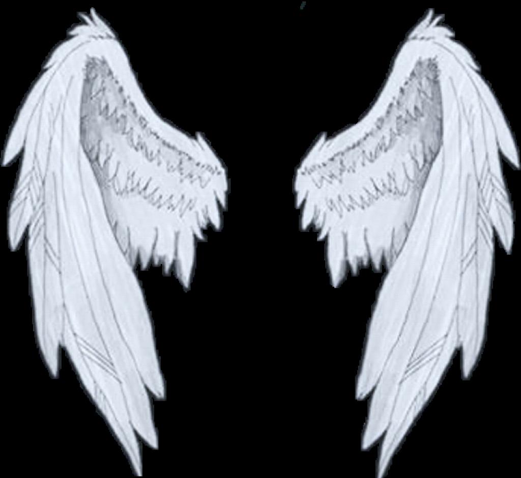 HD #wings #white #angel.