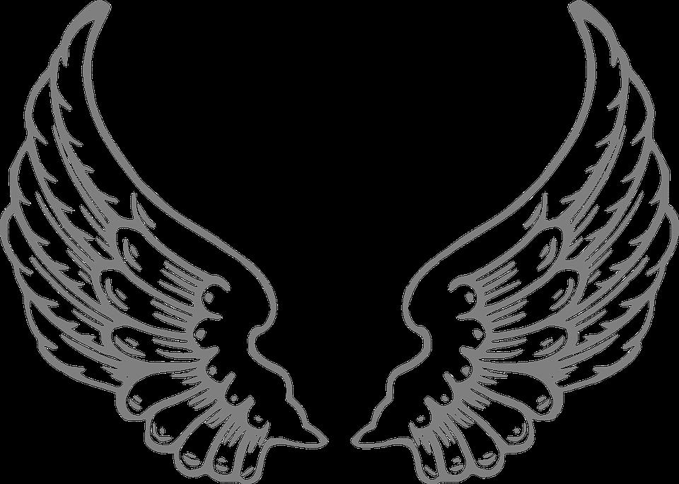 Asa de anjo png 1 » PNG Image.