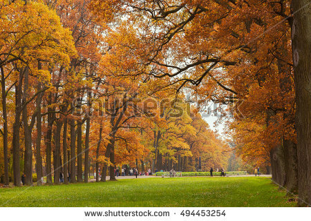 Autumn Stock Photos, Royalty.