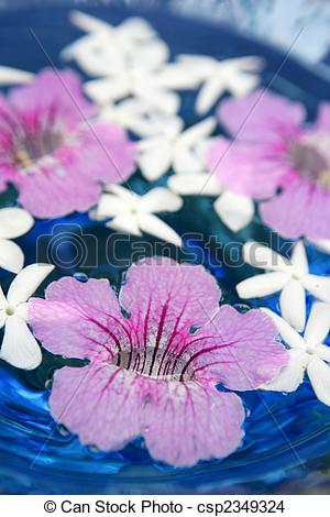 Stock Photo of Jasmine, and pink Asarina, candles and blue water.