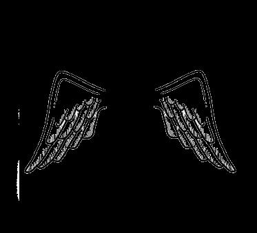 asas tumblr wings dudahmt.