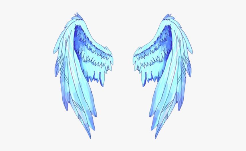tumblr #wings.