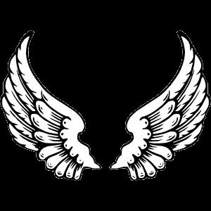 Desenho de asas png » PNG Image.