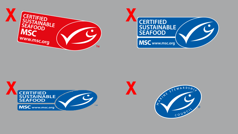 MSC brand guidelines.