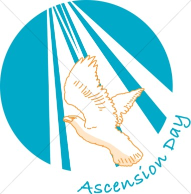 Ascension Day Flying Pigeon Clipart Picture.