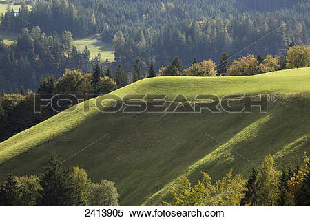 Stock Image of Sunlit green hillside with trees in autumn; Aschau.
