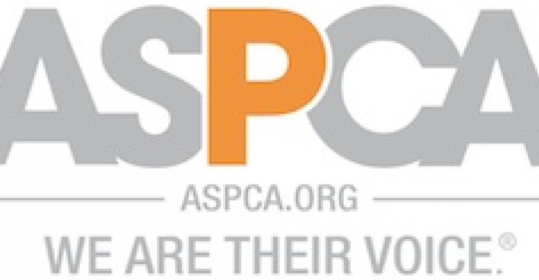 ASPCA Teams for Toys.