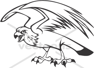 asfms falcon clipart black and white - Clipground