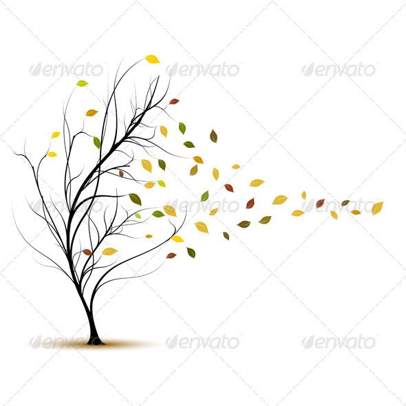 Fall Tree in Autumn With Wind Blowing.