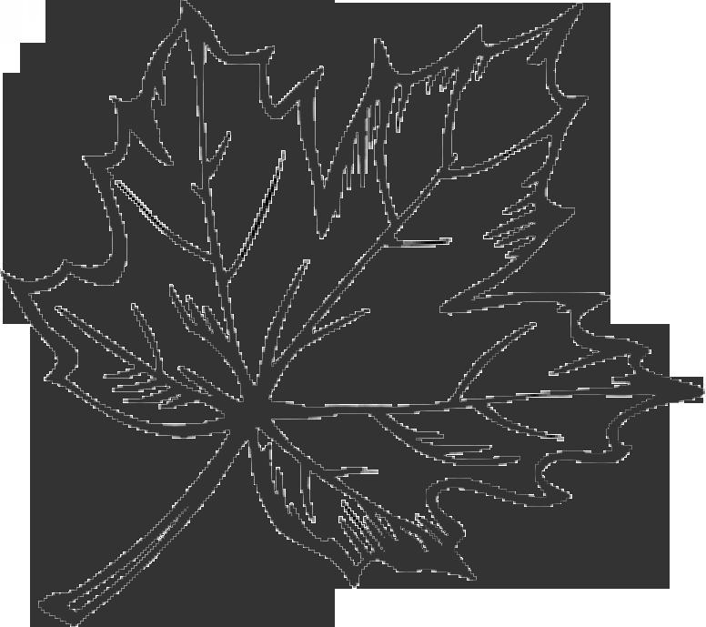 Clipart leaf doodle, Clipart leaf doodle Transparent FREE.