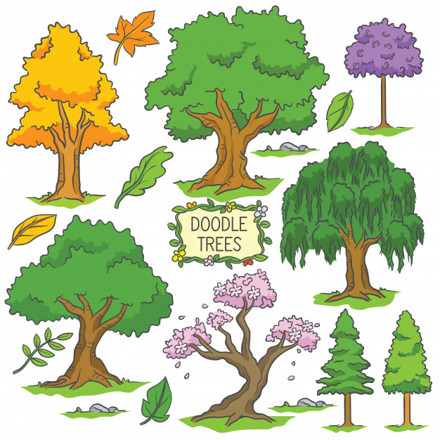 Colorful hand drawn doodle tree Vector.