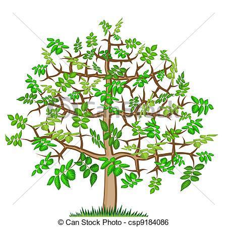 Ash tree clipart 8 » Clipart Portal.