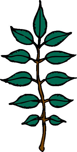Ash Leaves Clip Art at Clker.com.
