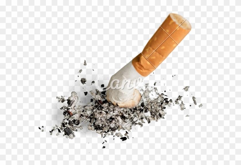 Ashed Cigarette Png, Transparent Png (#3047376).