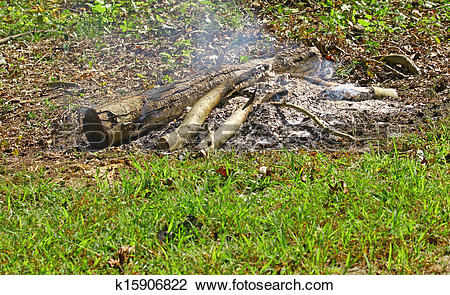 Stock Photo of A pile of wood logs burning down to ashes in the.