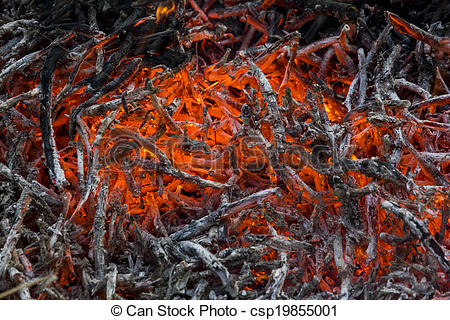 Glowing embers and ashes in a fire.