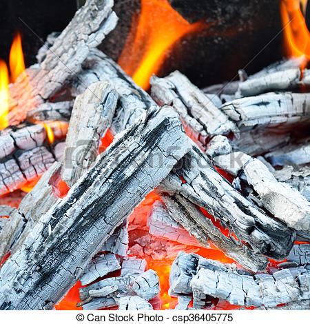 bonfire, fire, wood coal and ash.