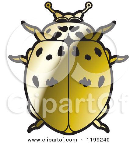 Royalty Free Stock Illustrations of Lady Beetles by Lal Perera Page 1.