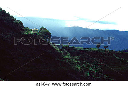 Picture of Silhouette of Stepped Fields The Philippines Asia asi.
