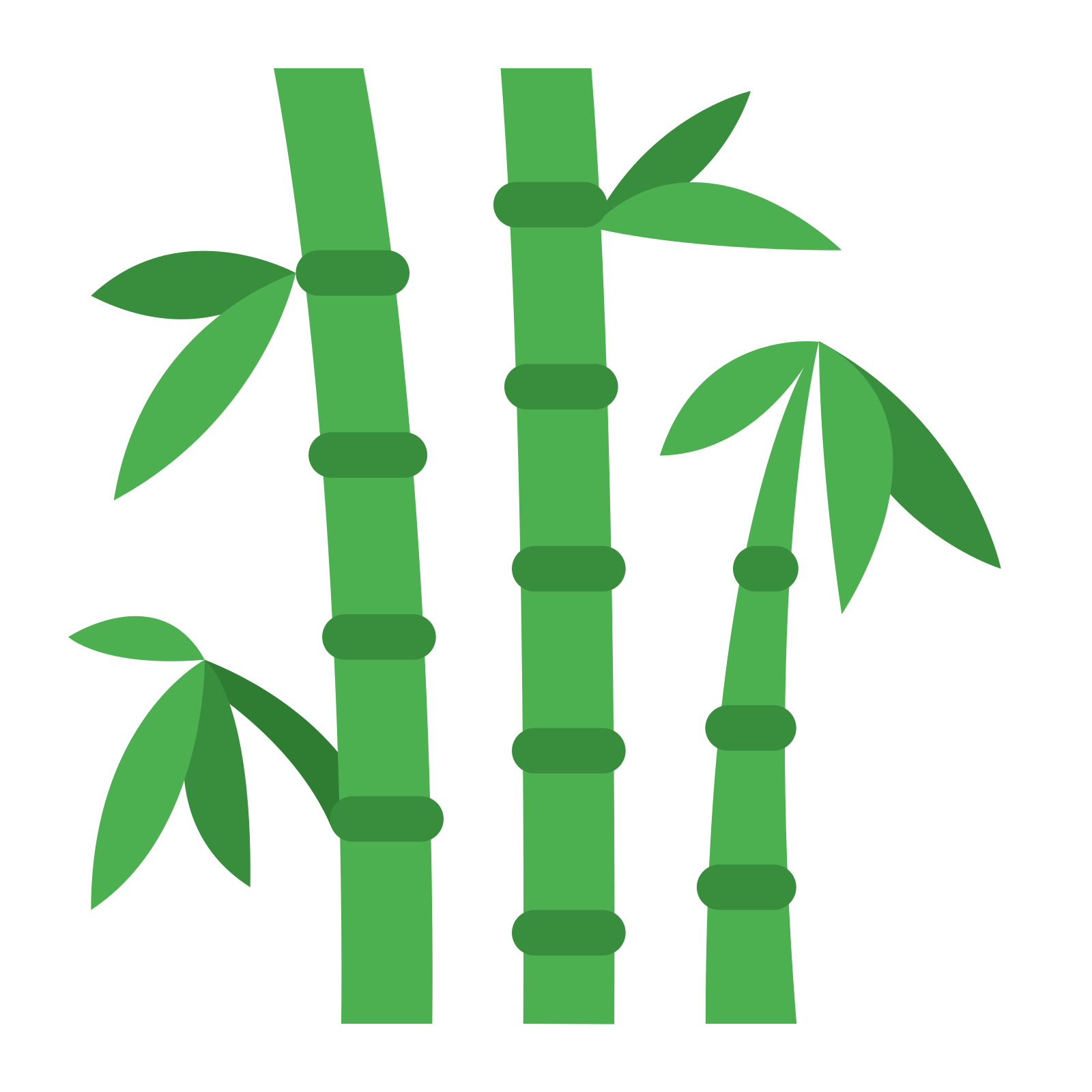 1659 Bamboo free clipart.