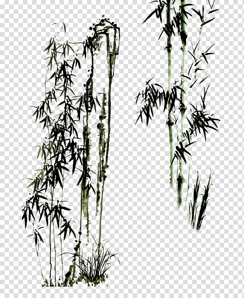 Bamboo trees illustration, Paper Drawing Bamboo Chinese.